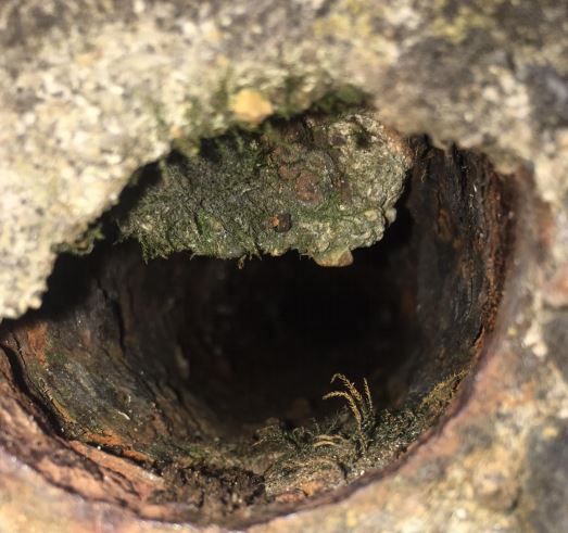 Image of blocked pipe through use of video pipe inspection